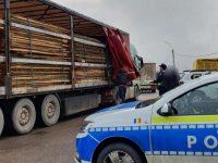 Trei transporturi de material lemnos semnalate de activişti de mediu ca fiind ilegale
