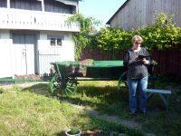 """Valeria Manta Tăicuţu, în curtea casei memoriale """"Mircea Motrici"""", citind poezie la o ediţie a festivalului literar organizat la Udeşti"""