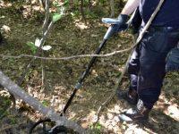 Muniţie sovietică găsită în pădure de un culegător de ciuperci
