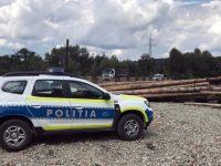 Poliţiştii suceveni au confiscat peste 50 mc de lemn într-o singură zi