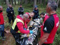 Trei persoane au fost atacate de un urs