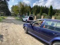 Dosar penal pentru tăiere şi furt de arbori nemarcaţi