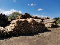 Amendă de 6.000 de lei pentru o societate comercială din Moldoviţa